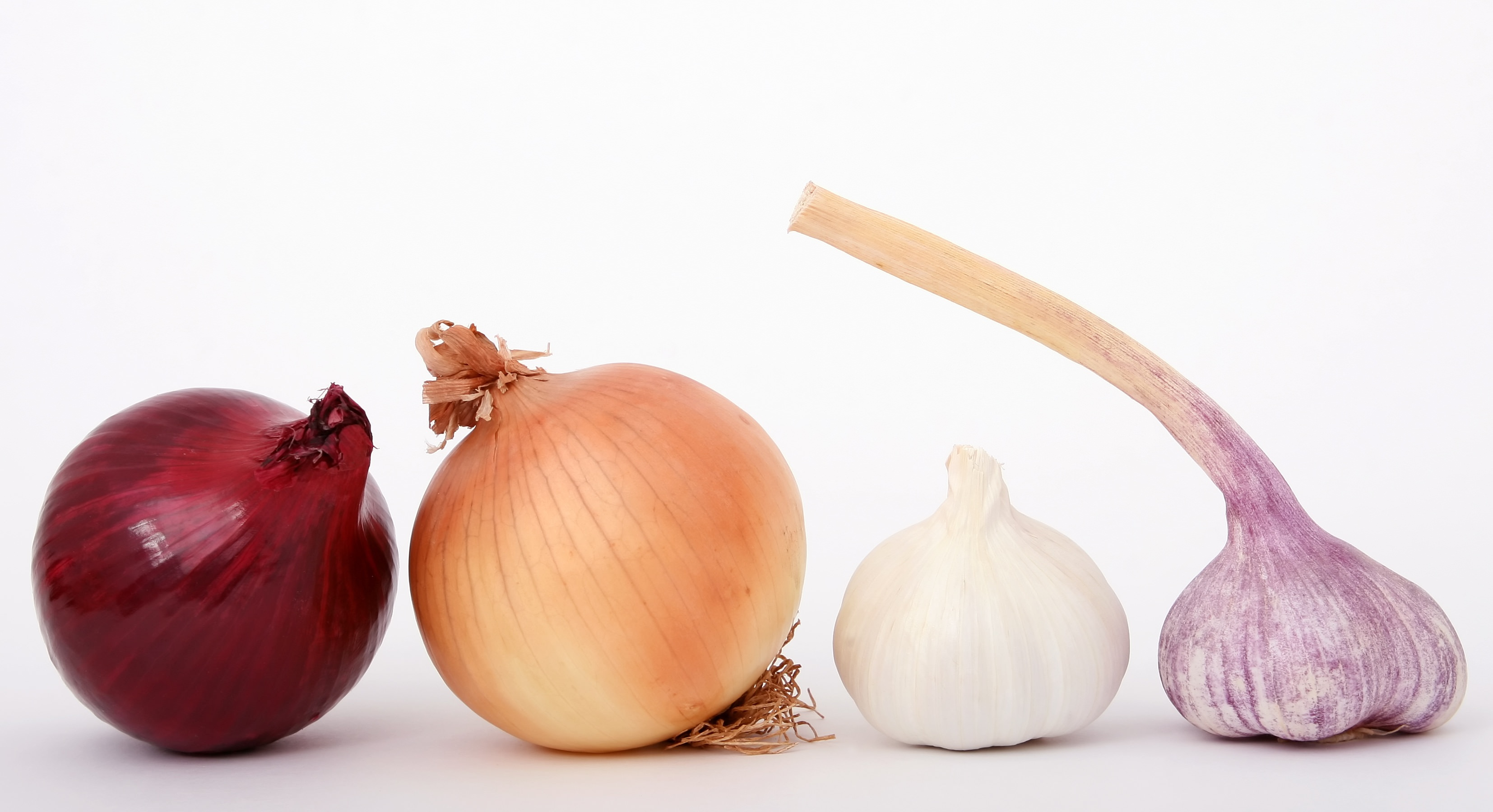 Why Avoid Onions and Garlic? – Divya Alter